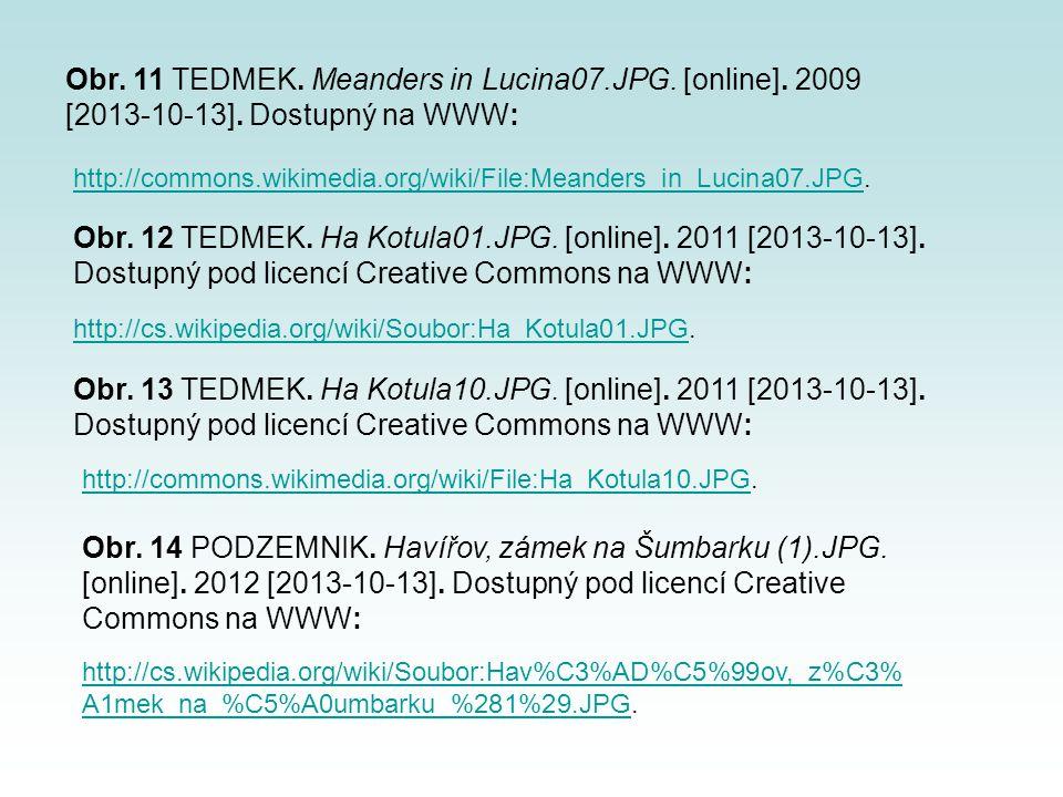 Obr. 11 TEDMEK. Meanders in Lucina07. JPG. [online]. 2009 [2013-10-13]